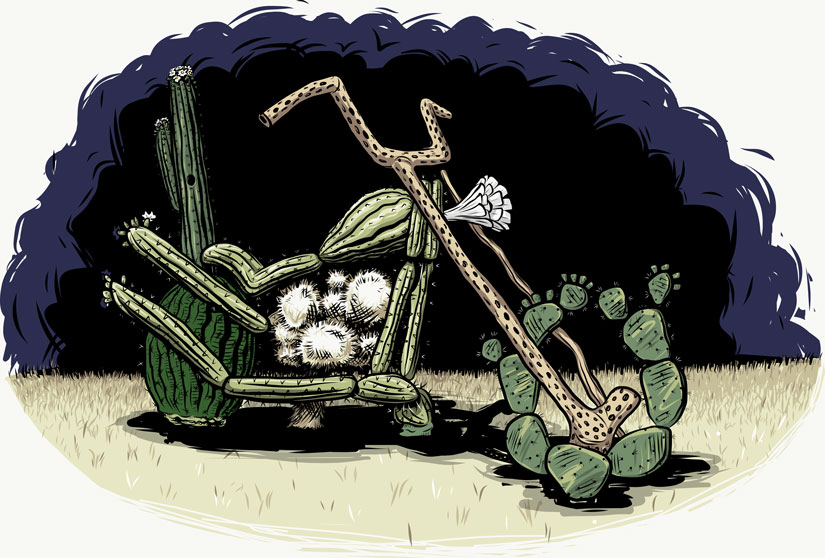 cactus motorcycle illustration